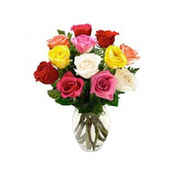Long Stem Roses - Mixed 12